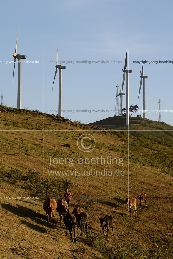 KENYA, Nairobi, Ngong Hills, 25,5 MW Wind Power Station with Vestas and Gamesa wind turbines, owned and operated by KENGEN Kenya Electricity Generating Company, shepherd with cows / KENIA, Ngong Hills Windpark, Betreiber KenGen Kenya Electricity Generating Company mit Vestas und Gamesa Windkraftanlagen, junger Hirte mit Kuehen