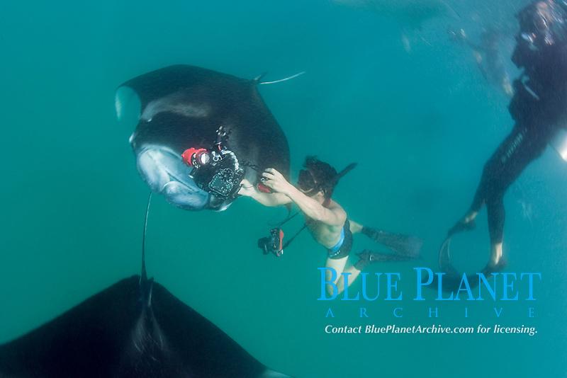 photographer pulls camera back just after shoving it inside mouth of reef manta ray, Mobula alfredi, feeding on plankton, Hanifaru Bay, Baa Atoll, Maldives, Indian Ocean
