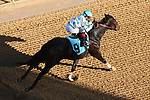 March 6, 2021: Naughty Alfred (9) with jockey Rocco Bowen crossing the finish line in the sixth race at Oaklawn Racing Casino Resort in Hot Springs, Arkansas. ©Justin Manning/Eclipse Sportswire/CSM