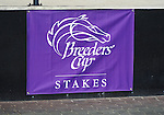 """09 September 19: Both the Natalma Stakes and the Summer Stakes were part of the Breeders' Cup """"Win and You're In"""" series at Woodbine Racetrack in Rexdale, Ontario."""