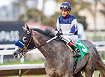 AUG 31: American Theorem with Tiago Perierra wins the at Del Mar Thoroughbred Clubb in Del Mar, California on August 31, 2019. Evers/Eclipse Sportswire/CSM