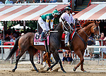 Union Street in the pose parade as Marley's Freedom (no. 7) wins the Ketel One Ballerina  Stakes (Grade 1), Aug. 25, 2018 at the Saratoga Race Course, Saratoga Springs, NY.  Ridden by  Mike Smith, and trained by Bob Baffert, Marley's Freedom finished 3 3/4  lengths in front of Still There (No. 3).  (Bruce Dudek/Eclipse Sportswire)