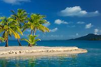Beach with palm trees. bora Bora. French Polynesia.
