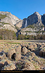 Yosemite Falls and Grass Mounds from Cook's Meadow in March, Yosemite National Park