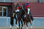 January 22, 2021: Moonlite Strike (6) with jockey Joseph Talamo aboard before the Smarty Jones Stakes at Oaklawn Racing Casino Resort in Hot Springs, Arkansas on January 22, 2021. Justin Manning/Eclipse Sportswire/CSM