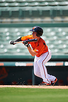 GCL Orioles third baseman Branden Becker (2) squares to bunt during a game against the GCL Twins on August 11, 2016 at the Ed Smith Stadium in Sarasota, Florida.  GCL Twins defeated GCL Orioles 4-3.  (Mike Janes/Four Seam Images)