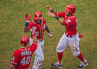 28 July 2013: Washington Nationals outfielder Denard Span is greeted by teammates as he returns to the dugout after hitting a two-run homer in the 6th inning against the New York Mets at Nationals Park in Washington, DC. The Nationals defeated the Mets 14-1. Mandatory Credit: Ed Wolfstein Photo *** RAW (NEF) Image File Available ***