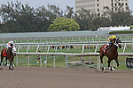 March 29, 2014: #1 Happy My Way (FL) with jockey Joe Bravo up wins the Sir Shackelford Stakes by 5 3/4 lengths at Gulfstream Park in Hallandale Beach, FL. Liz Lamont/ESW/CSM
