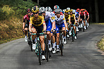 The peloton with Tony Martin (GER) Team Jumbo-Visma on the front during Stage 1 of Criterium du Dauphine 2020, running 2185km from Clermont-Ferrand to Saint-Christo-en-Jarez, France. 12th August 2020.<br /> Picture: ASO/Alex Broadway | Cyclefile<br /> All photos usage must carry mandatory copyright credit (© Cyclefile | ASO/Alex Broadway)