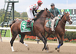 To Honor and Serve, ridden by John Velazquez, runs in the Kelso Handicap (GII) at Belmont Park in Elmont, New York on September 29, 2012. (Bob Mayberger/Eclipse Sportswire)