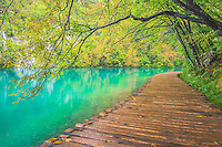 Plitvice Lakes National Park in Croatia is known for the green waters and many waterfalls.  Limestone walls are responsible for both.