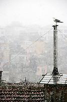 Urban snow scene, Beyoglu, Istanbul, Turkey