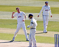 Yorkshire's Steven Patterson celebrates after taking the wicket of Jordan Cox during Kent CCC vs Yorkshire CCC, LV Insurance County Championship Group 3 Cricket at The Spitfire Ground on 16th April 2021