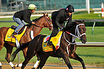 Louisiana Derby winner, Pants On Fire and Mucho Macho Man on the Churchill Downs track April, 30, 2011.