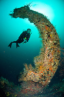 Diver at the Wreck Bianca C<br />