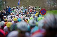 Liège-Bastogne-Liège 2013..peloton up the Côte de Stockeu (Stèle Eddy Merckx)