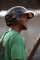 Daytona Tortugas Robert Ramirez (25) in the batting cage during practice before a game against the Tampa Yankees on April 24, 2015 at George M. Steinbrenner Field in Tampa, Florida.  Tampa defeated Daytona 12-7.  (Mike Janes/Four Seam Images)