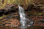 Dry Run Waterfalls, Loyalsock State Forest, PA