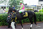 Skinner Box(6) with Jockey Luis Contreras aboard at  the Natalma Stakes at Woodbine Race Course in Toronto, Canada on September 13, 2014 with Jockey Patrick Husbands aboard.