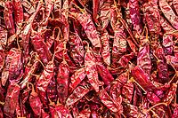 Tlacolula, Oaxaca, Mexico.  Tlacolula Market.  Large Red Chili Huajillo Peppers for Sale.