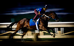 October 22, 2021: Jackie's Warrior works in preparation for the Breeders' Cup Sprint at Santa Anita Park in Arcadia, California on October 23, 2021. Evers/Eclipse Sportswire/CSM