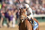 November 3, 2018: Audible #3, ridden by Javier Castellano, wins the 1st running of the Qatar Cherokee Run Stakes on Breeders' Cup World Championship Saturday at Churchill Downs on November 3, 2018 in Louisville, Kentucky. Alex Evers/Eclipse Sportswire/CSM