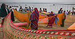 Maha Kumbh Mela, Allahabad (Prayag), India