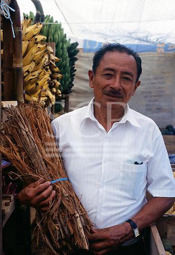 Peru. Peruvian Indian holding a bunch of Unha de Gato - medicinal plant.