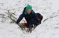 A young girl tries to get back up the hill while sledging following snowfall at Foots Cray Meadow, Sidcup, Kent, England on the 9 February 2021. Photo by Alan Stanford.