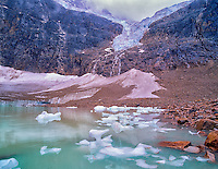 Small icebergs in tarn lake from Angel Glacier. Mt. Edith Cavell. Jasper National Park, Canada