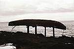 Curragh at Cappagh - 1984. Photograph by Liam McGrath