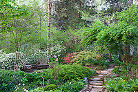 Spring woodland garden with flowering azaleas and secluded patio with rustic bent wood chairs, Boninti Garden, Virginia