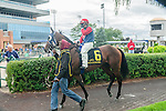 Samuel Dechamplain(6) with Jockey Justin Stein aboard before the Summer Stakes at Woodbine Race Course in Toronto, Canada on September 13, 2014 with Jockey Patrick Husbands aboard.