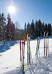 Deutschland, Bayern, Chiemgau, Reit im Winkl: Langlaufski und Winterlandschaft | Germany, Bavaria, Chiemgau, Reit im Winkl: cross-country skis and winter scenery