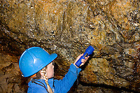 Kinder besichtigen ein Bergwerk unter Tage, entdecken mit Taschenlampe Mineralien an den Wänden des Stollens