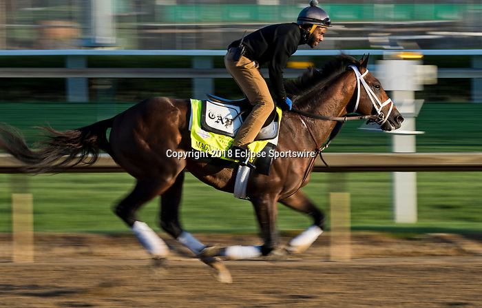 LOUISVILLE, KY - MAY 01: Magnum Moon, trained by Todd Pletcher, exercises in preparation for the Kentucky Derby at Churchill Downs on May 1, 2018 in Louisville, Kentucky. (Photo by Scott Serio/Eclipse Sportswire/Getty Images)
