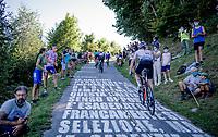 Chris Hamilton (AUS/Sunweb) up the brutal Muro di Sormano (avg 17%/max 25%)<br /> <br /> 114th Il Lombardia 2020 (1.UWT)<br /> 1 day race from Bergamo to Como (ITA/231km) <br /> <br /> ©kramon