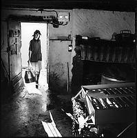 Europe/France/Auvergne/15/Cantal/Massif du Puy Mary :  L'épouse de Daniel Reygade buronnier ,porte le lait  aprés la traite au buron du Col de Rombière  -préparation du Cantal Salers-Parc Naturel Régional des Volcans d'Auvergne