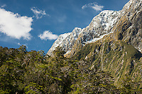 Fresh snow on mountains in Milford Sound, Fiordland National Park, UNESCO World Heritage Area, Southland, New Zealand, NZ