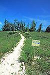 Bimini Trail