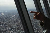 Tokyo skyline viewed from the Tokyo Sky Tree, Japan. February, 2013