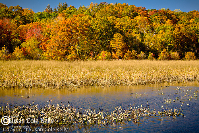 The Connecticut River Estuary Canoe-Kayak Trail in Deep River, CT, USA