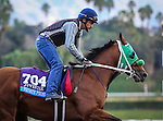 October 26, 2014: Private Prospect exercises in preparation for the Breeders' Cup Juvenile at Santa Anita Park in Arcadia, California on October 26, 2014. Zoe Metz/ESW/CSM