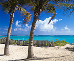 Anguilla, BWI: Palm shaded beach and turqoise waters of Upper Shoal, Caribbean Sea