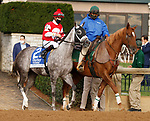 "October 02, 2020 : #2 Travel Column and jockey Florent Geroux finish 3rd in the 69th running of The Darley Alcibiades (Grade 1) ""Win and You're In Breeders' Cup Juvenile Fillies Division"" $350,000 at Keeneland Racecourse in Lexington, KY on October 02, 2020.  Candice Chavez/ESW/CSM"