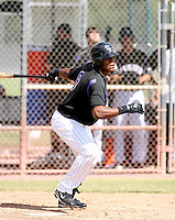 Daniel Mayora / Colorado Rockies 2008 Instructional League..Photo by:  Bill Mitchell/Four Seam Images