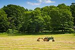 Field with John Deere tractor and hay rake.