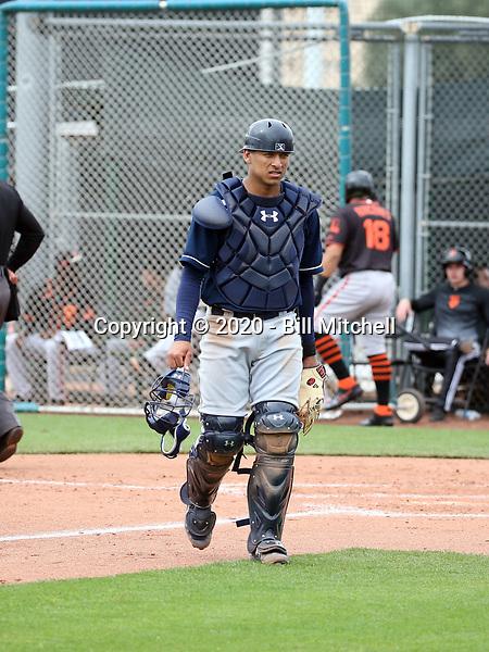 Bo Naylor / Noah Naylor - Cleveland Indians 2020 spring training (Bill Mitchell)