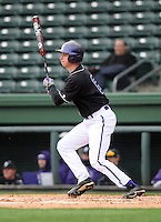 Outfielder Jake Jones (6) of the Furman University Paladins hits in a game against the Northwestern Wildcats on Saturday, February 16, 2013, at Fluor Field in Greenville, South Carolina. The game was cancelled in the fifth inning due to snow. (Tom Priddy/Four Seam Images)