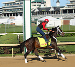 April 23, 2014 Ride On Curlin gallops at Churchill Downs with rider Bryan K. Beccia for trainer William G. Gowan. He is owned by Daniel J. Dougherty.